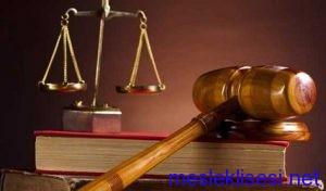 adalet alanı dalları
